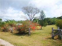 Vacant Land Port Vila Vanuatu