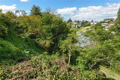 86b Greerton Road Greerton NZ