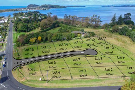 Western Bay of Plenty_New Zealand_Postcode Query