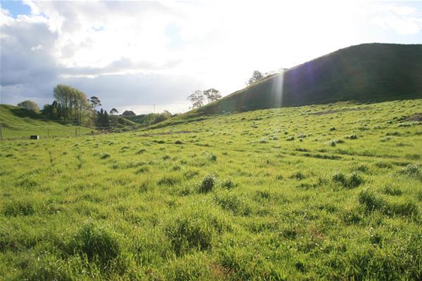 2088 (Lot 2) Manawahe Road Whakatane NZ
