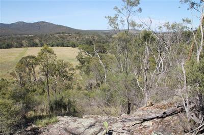 Rural B B Properties For Sale Sawyers Gully For Sale