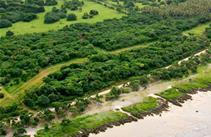 First National Ocean Front Subdivision Vanuatu