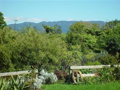 5 Olive Close Omokoroa NZ