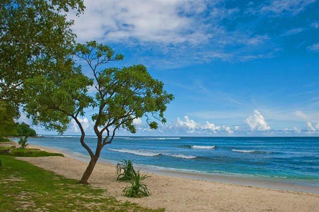 Eratap Point, Efate Island, Vanuatu (654)