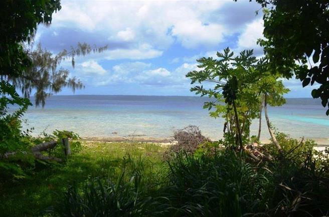 Angelfish Cove, (1561) Port Vila Vanuatu