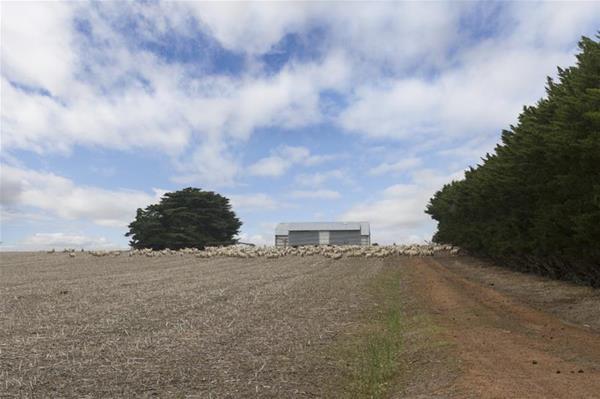 122 Cemetery Road & Glenelg Highway Wickliffe VIC