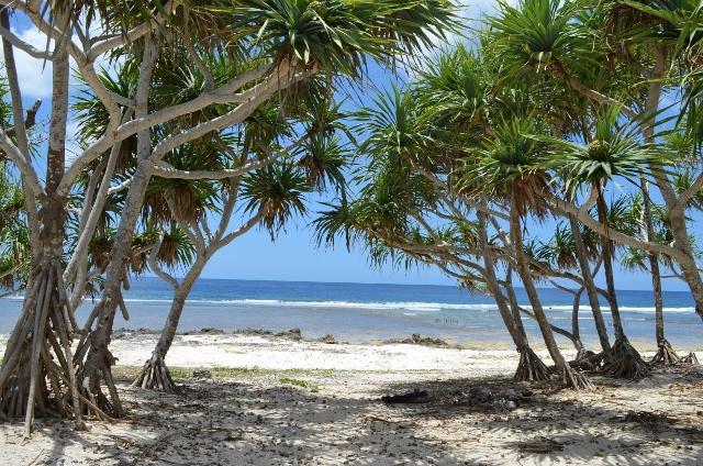 Pango Beach Estate - Subdivision, (1598) Port Vila Vanuatu
