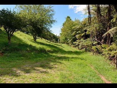 a/86 Pahoia Road Whakamarama NZ